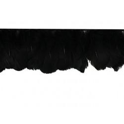 Pióra gęsie na taśmie BLACK