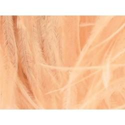 Pióra strusie na taśmie CHAMPAGNE